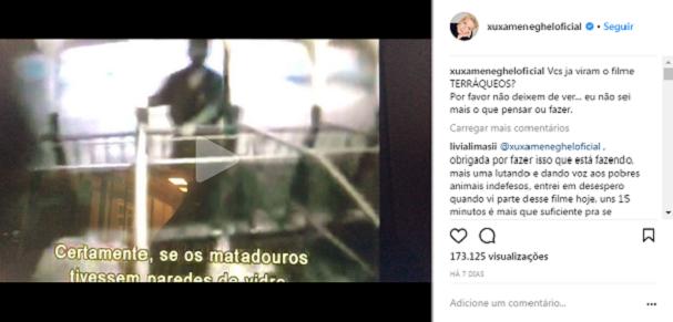 Xuxa (Foto: Reprodução)