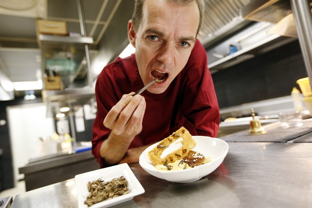 Chef David Faure aparece colocando grilo na boca atrás de um de seus pratos que levam o inseto (Foto: Valery Hache/AFP)