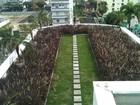 'Telhado verde' começa a ganhar espaço (Divulgação/Instituto Cidade Jardim)