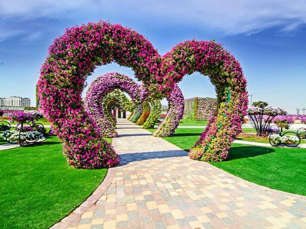 G1  Jardim na árida Dubai tem milhões de flores que formam estrelas