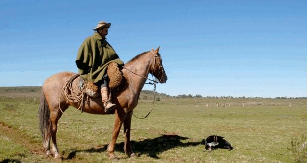Vaqueiro no Sul (Foto: Colégio Qi/Reprodução)
