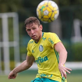 Fabiano Palmeiras (Foto: Cesar Greco/Ag Palmeiras/Divulgação)