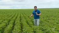 Agricultores do médio Parnaíba tem boas expectativas para o período chuvoso