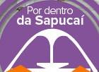 Saiba como é desfilar na Sapucaí, no Rio (Editoria de Arte/ Foto: Alexandre Durão/G1)