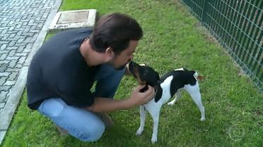 Cachorrinho Chico é o queridinho de 'Pega-Pega'
