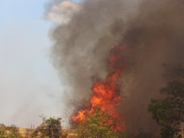 Incêndio de grandes proporções se alastrou na Zona Leste de Teresina (Foto: Ellyo Teixeira/G1)