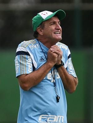 BLOG: Nem tudo está perdido para o Palmeiras