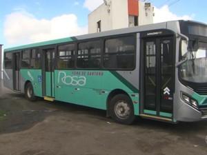 Ônibus da empresa Rosa sumiram após impasse na Justiça (Foto: Reprodução/TV Subaé)