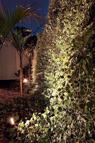 jardim-vertical-suspenso-iluminação-plantas-paisagista-Elza-Niero (Foto: Evelyn Müller/Editora Globo)
