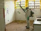 Araraquara tem 246 casos de dengue em uma semana e total já chega a 922