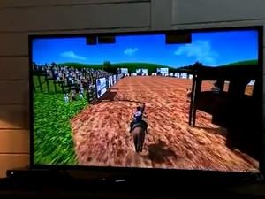 Game gaudério ensina a laçar  (Foto: Reprodução/RBS TV)
