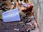Vigilância Epidemiológica aumenta ações contra o Aedes durante o verão