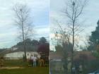 Menino de 6 anos é resgatado ao ficar preso a 15 metros em árvore nos EUA