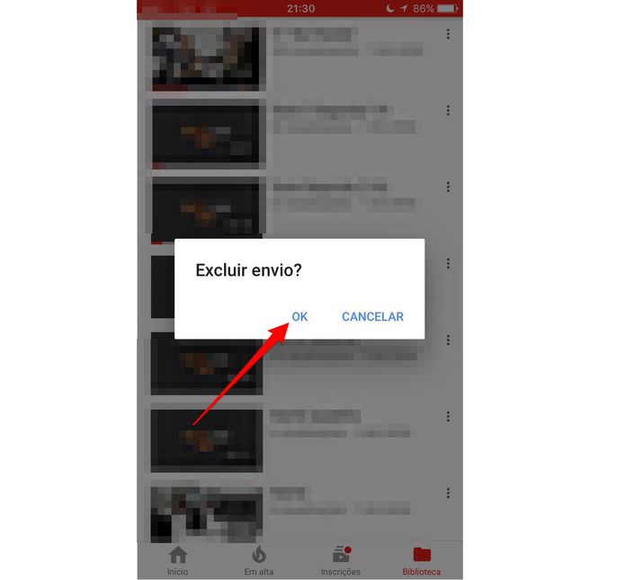 Confirme que você deseja excluir o vídeo (Foto: Reprodução/Lucas Mendes)