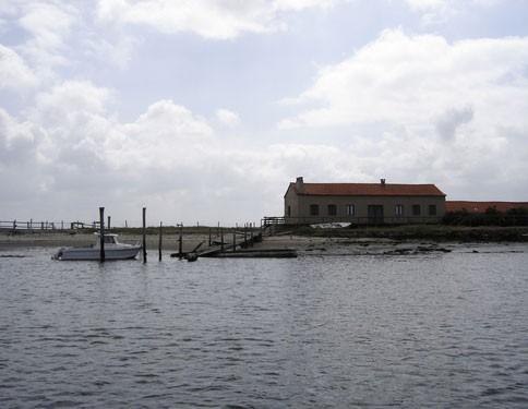 Casa construída na ilha de Monte Farinha, anunciada em jornal brasileiro. (Foto: Divulgação/Céu Vieira/Camin)