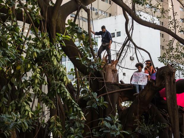 Sobre uma árvore, ativistas protestam contra a reintegração de posse do Parque Augusta, na Rua Augusta, Centro de São Paulo (Foto: Victor Moriyama/G1)