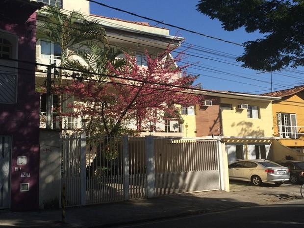 Cerejeira na Rua Duarte de Freitas, em Mogi das Cruzes (Foto: Cristina Requena/G1)