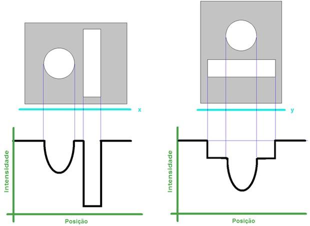 Esquema com corpos da figura (Foto: Reprodução/Fuvest)