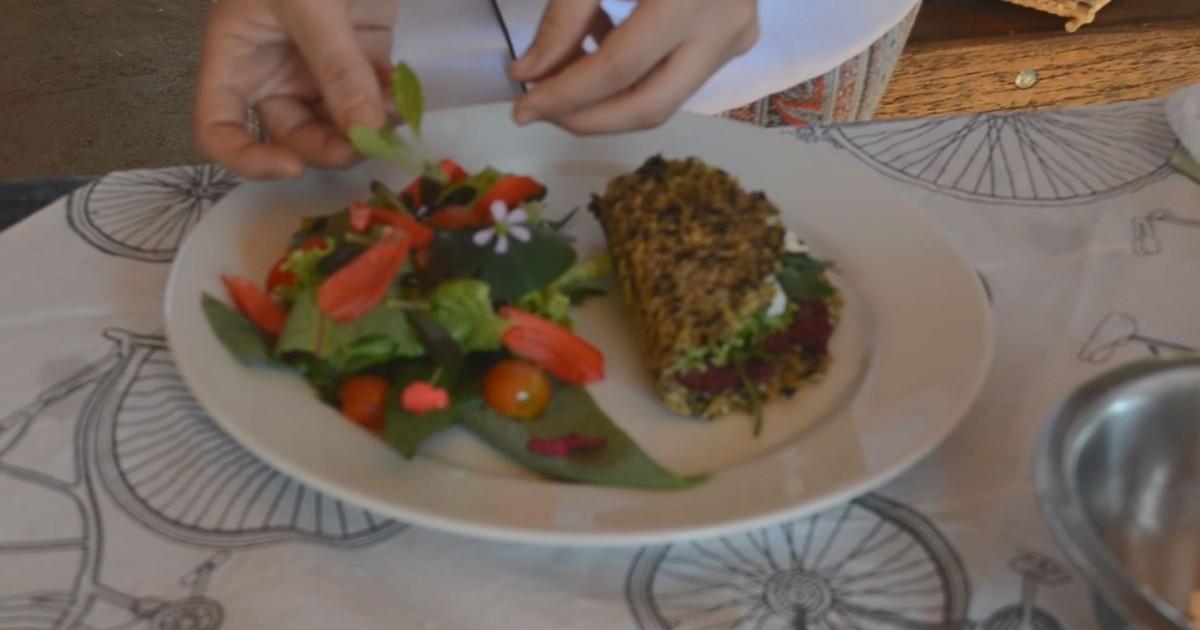 Antes 'praga', Pancs ganham espaço em restaurantes e pesquisas na USP