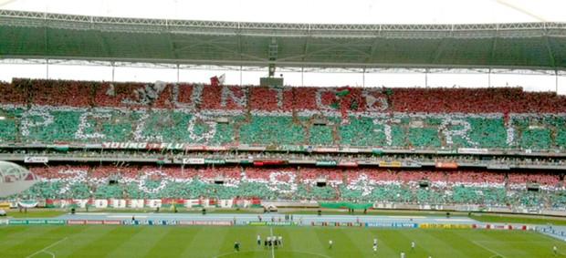 Final brasileiro Mosaico Flu (Foto: Globoesporte.com)
