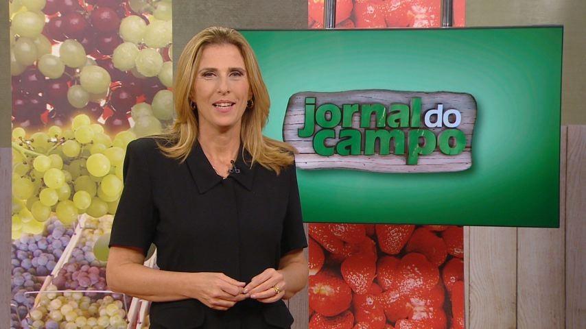 Cláudia Gregório comanda o programa (Foto: Divulgação)