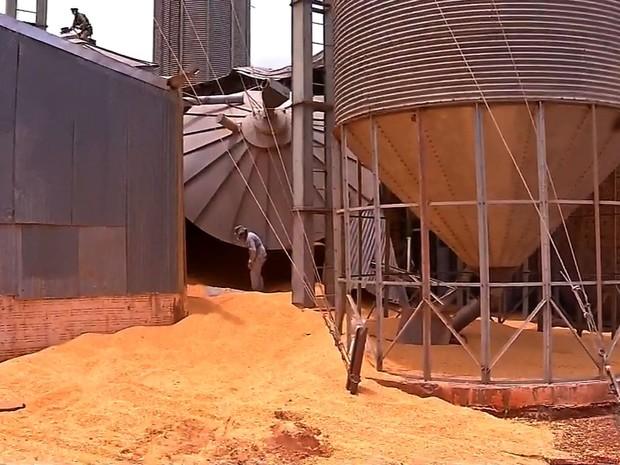 Notícias de Tangará da Serra :Trabalhador morre soterrado após silo com milho desabar