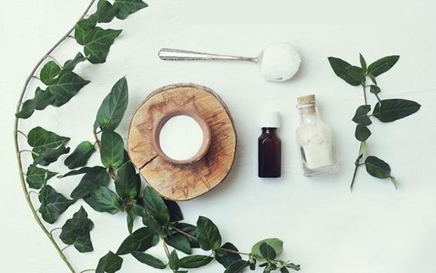 Ingredientes naturais para fazer seu próprio cosmético (Foto: Reprodução )