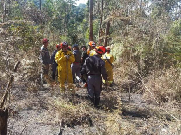 Equipe do Comando da Aeronáutica, Guarda Municipal de Jundiaí e bombeiros trabalharam no local (Foto: Guarda Municipal/Divulgação)