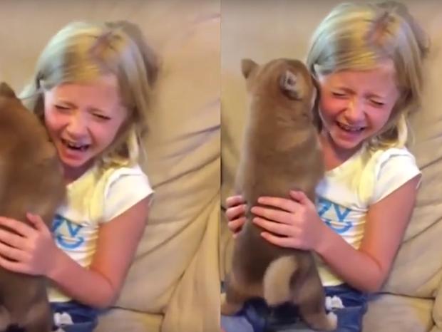 Menina chora de emoção ao ganhar cachorro   (Foto: Reprodução/ YouTube)