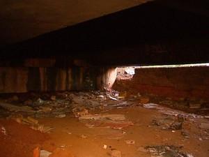 Funcionária da Prefeitura de Araraquara foi achada morta embaixo do pontilhão (Foto: Reginaldo dos Santos/EPTV)