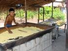 Governo inicia levantamento de famílias para receber 'Bolsa Verde'