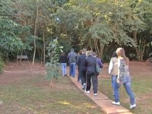Parque Estadual do Prosa, em Campo Grande (Foto: Reprodução/TV Morena)
