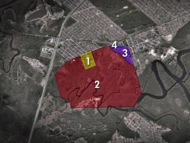 Área de preservação ambiental foi invadida em São Vicente, SP (Foto: Reprodução/ TV Tribuna)