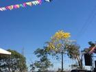 Final de semana será de sol forte e calor em Rondônia, diz Sipam
