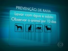 Vacina contra raiva está em falta nas unidades de saúde do Rio