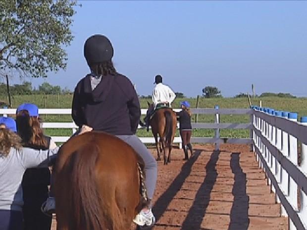 Cavalos ajudam no tratamento de pessoas especiais (Foto: Reprodução/TV Tem)