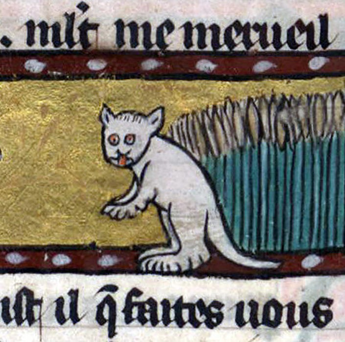 Gato representado em arte da Idade Média (Foto: Reprodução/ Roman de Renart, France ca. 1300-1350)