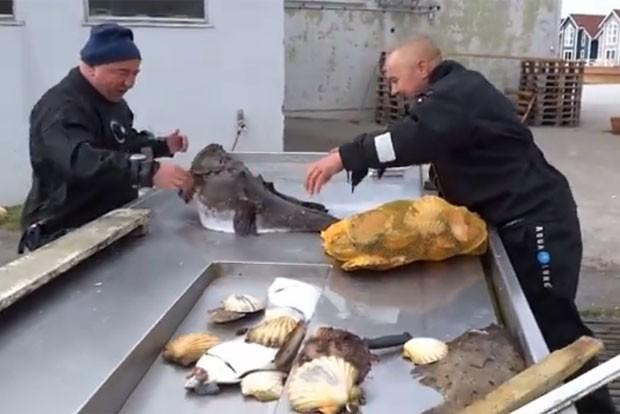 Aparador Line Branco Laqueado ~ G1 Vídeo de homem com a m u00e3o presa em boca de peixe sapo vira hit na web notícias em Planeta
