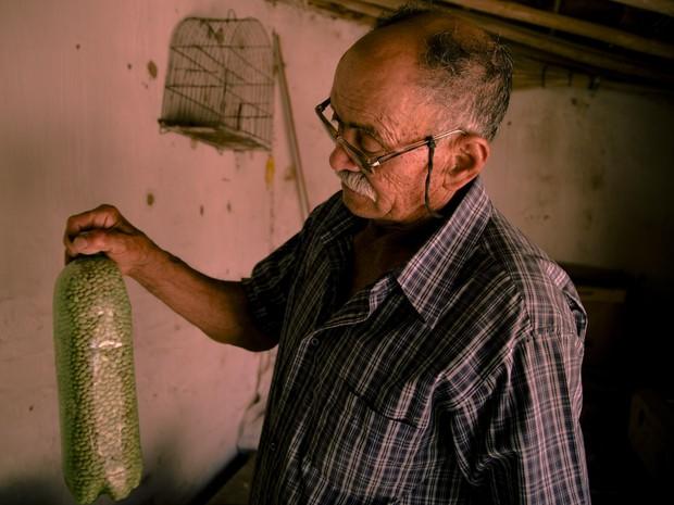 Seu Dodô mostra milho das Sementes da Paixão, nome criado por ele (Foto: Fernanda Rappa/Divulgação)