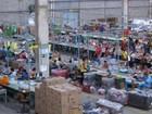 Estrela inaugura em junho sua primeira fábrica no Nordeste