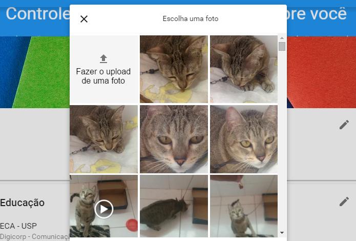 Use uma foto que já está no Google Fotos (Foto: Reprodução/Paulo Alves)