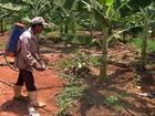 Encontro estadual debate o uso de agrotóxicos e os impactos na saúde