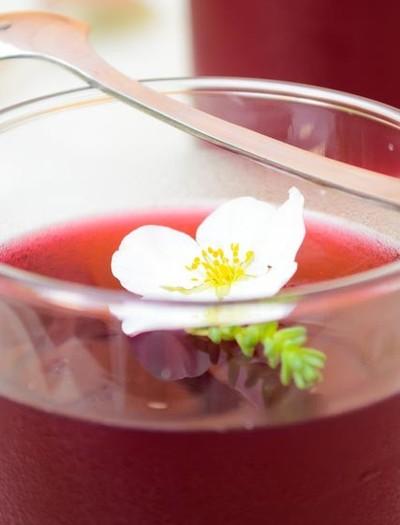 gelatina-hibisco-melancia (Foto: Divulgação)