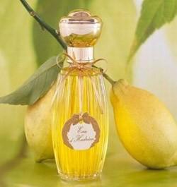 Perfumes mais caros do mundo: Annick  (Foto: Divulgao)
