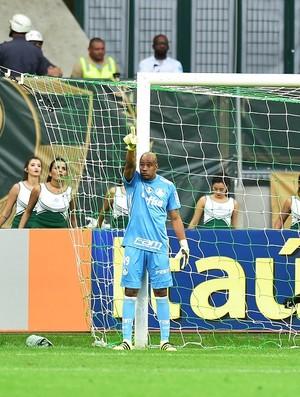 BLOG: Jailson e a academia palmeirense de goleiros campeões em emergências