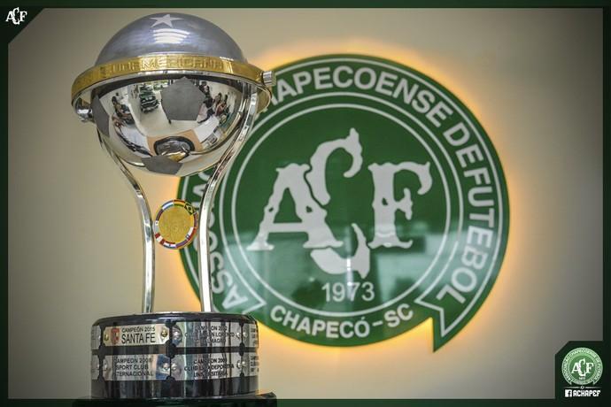 Chapecoense Atlético Nacional Sul-Americana Agradecimento (Foto: Reprodução/Twitter)