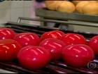 Festas juninas do NE alavancam produção de queijo do reino em MG