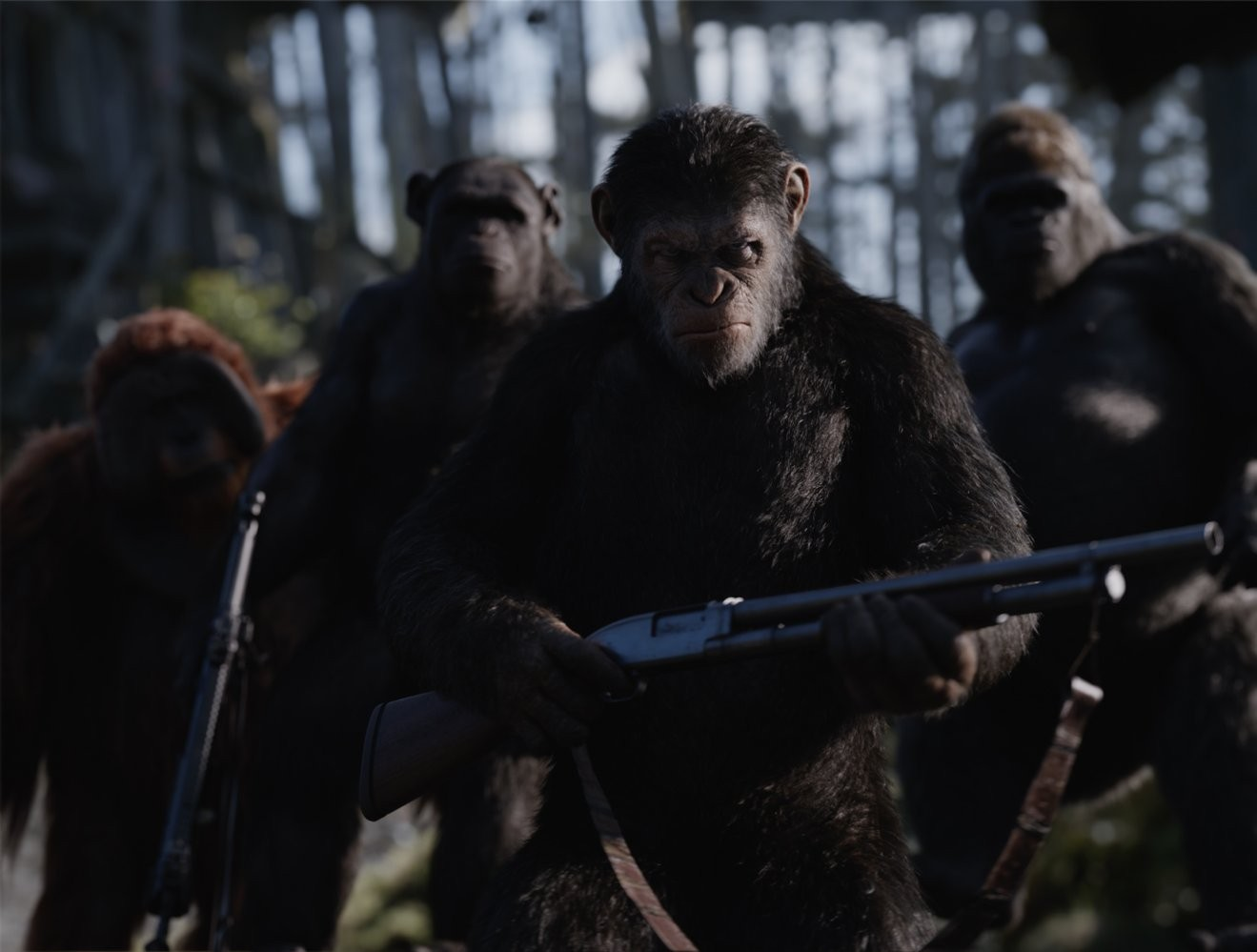 Macacos armados (Foto: Divulgao)