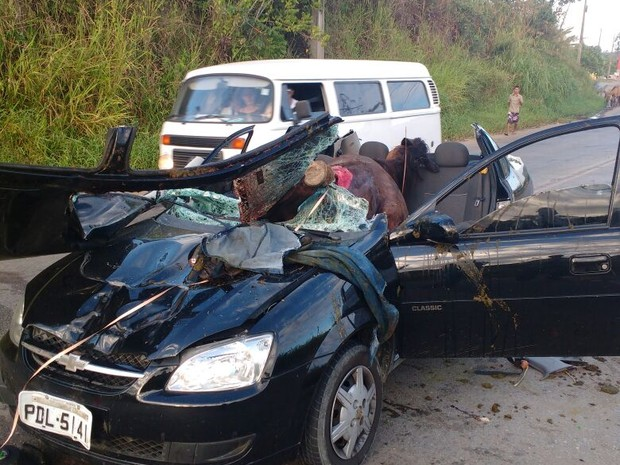 Com impacto, corpo do cavalo entrou todo dentro do carro (Foto: Divulgação/Corpo de Bombeiros)