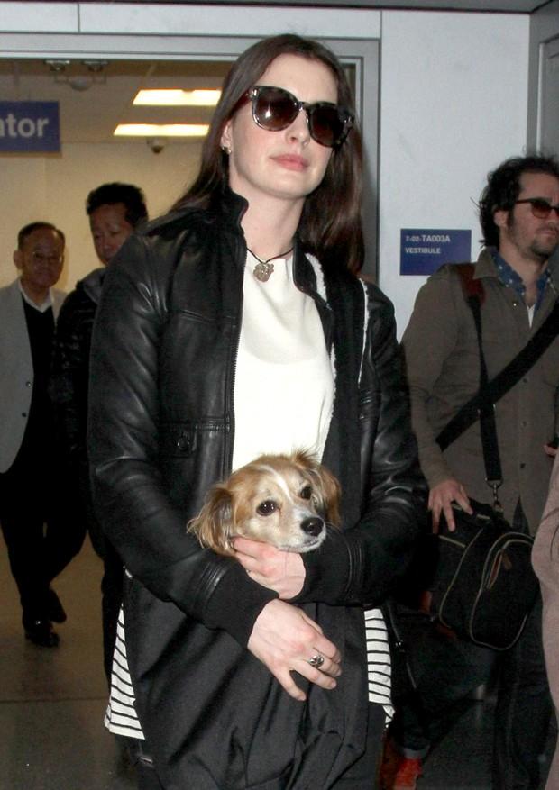 Anne Hathaway e o cachorro Kenobi (Foto: AKM-GSI)
